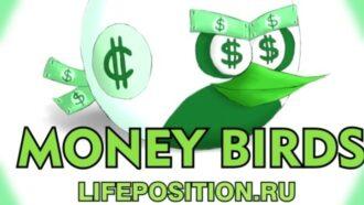 money-birds заработок и отзывы