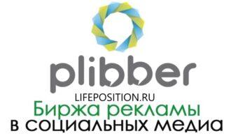 Обзор plibber.ru - Отзывы и как работает сайт