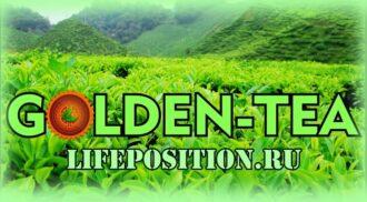 Обзор Golden-Tea - Отзывы и заработок в игре
