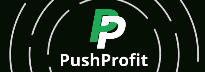 Тизерная партнерка push уведомлений - Pushprofit.ru